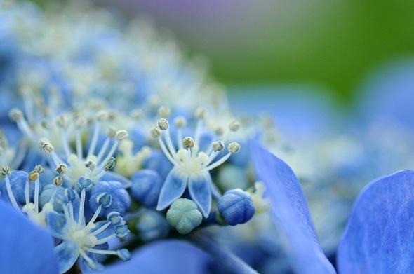 7 fundamental spiritual virtues